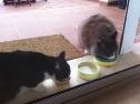 Gemeinsamer Lunch mit Julius