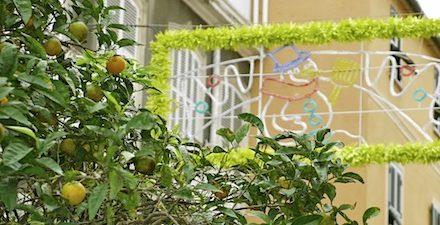 Weinachten. Orangen. Baum.